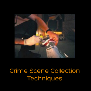 Crime Scene Collection Techniques.