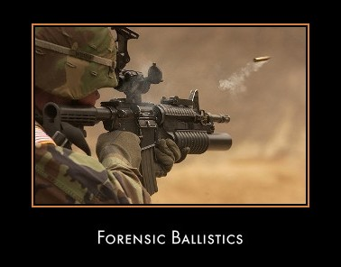 ballistics and forensic science Forensic science ballistics power point - download as powerpoint presentation (ppt), pdf file (pdf), text file (txt) or view presentation slides online.