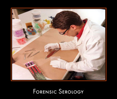 I Am Studying In England At The Moment And Want To Work As A Forensic Serologist Universities Do Not Offer Degree Such
