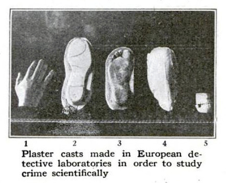 Classic Forensic Science Article