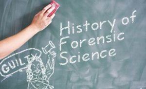 history of forensic photography essay