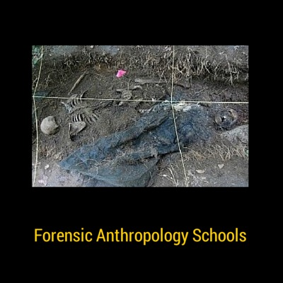Forensic Anthropology Schools