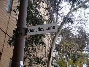 Genetics Forensics