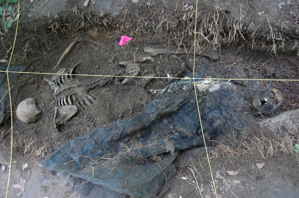skeletal human remains